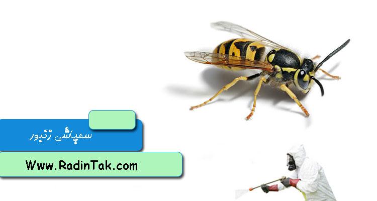 سمپاشی زنبور عسل